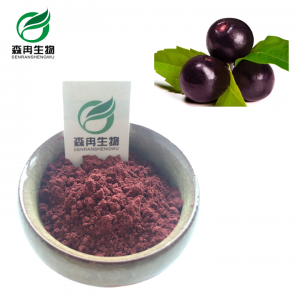 Maqui Berry Powder Supplier Xi An Sr Bio Engineering Co Ltd